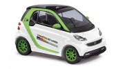 BUSCH 46134 Smart Fortwo 07 Champion
